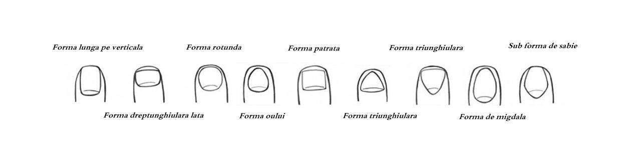Formarea unghiei