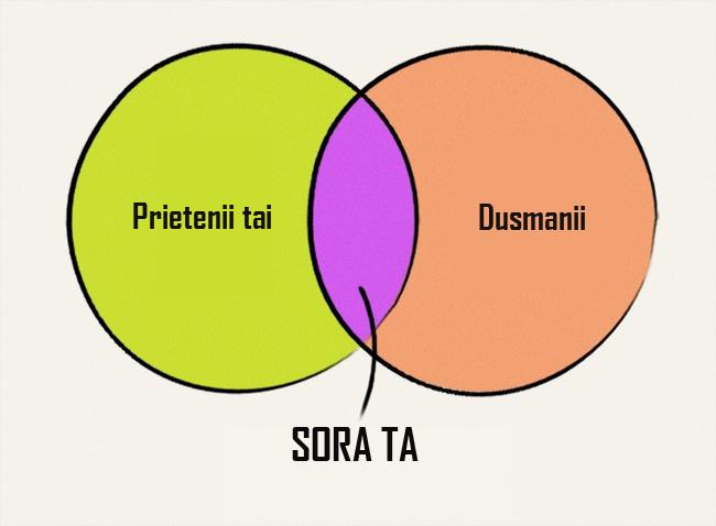 Diagrame despre surori