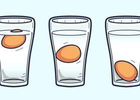 Cum poti afla cat de vechi este un ou?
