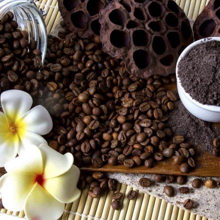  Masti pentru fata cu cafea