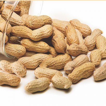 Consumul de arahide ajuta la prevenirea bolilor cardiovasculare