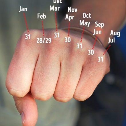 Trucuri logice precum numaratul lunilor pe degete