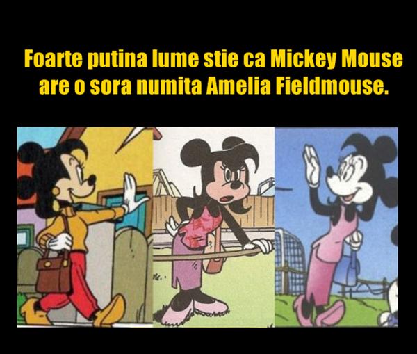 amelia fieldmouse