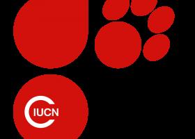 Ce inseamna IUCN – Lista Rosie de disparitie a speciilor?