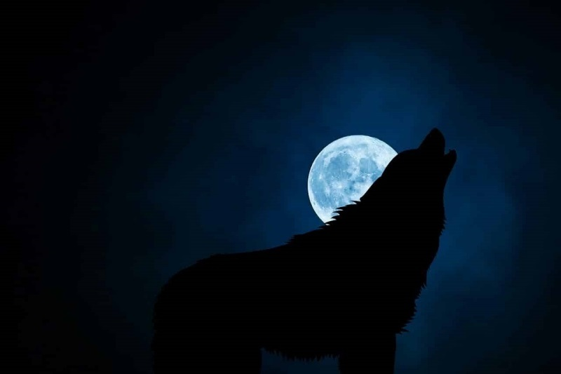 Noaptea întunecată a sufletului