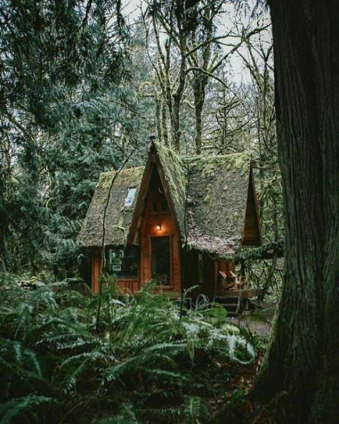 Cabana la munte 38