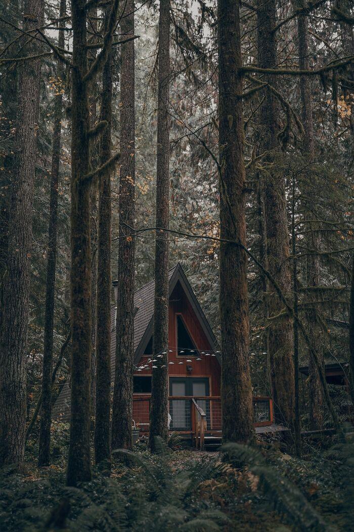 Cabana la munte 44