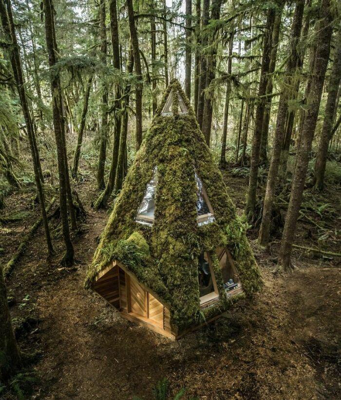Cabana la munte 45